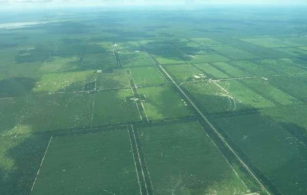 Una fotografia aerea mostra la devastazione che il taglio del legname ha portato nella terra degli Ayoreo.