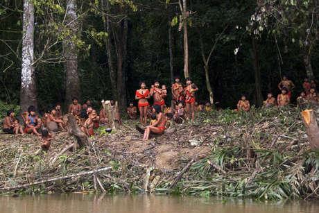 Braz-yano-fw-2010-146_460_landscape