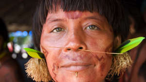Landmark operation evicts illegal ranchers from Yanomami land
