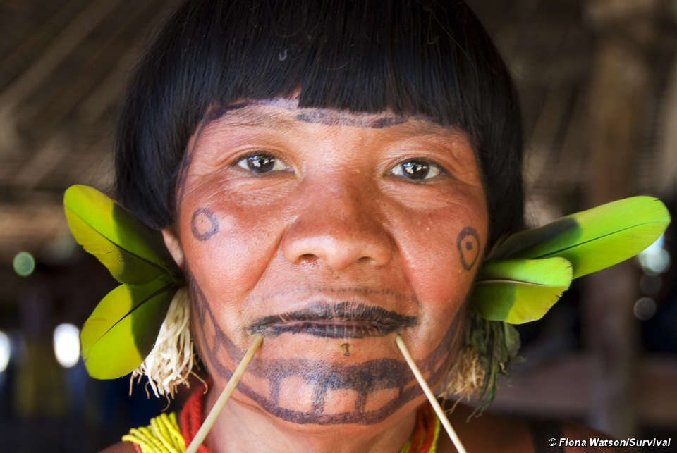 New photos emerge of uncontacted tribe in the Amazon