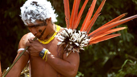 Braz-yano-fw-2010-272_460_wide