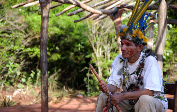 The Guarani's ancestral lands have been stolen from them to make way for agro-industry