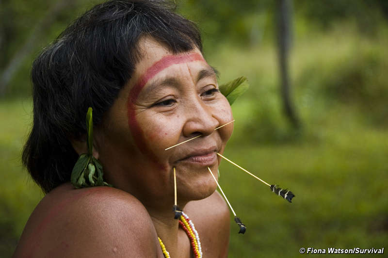 http://assets.survivalinternational.org/pictures/264/BRA-YAN-FW-2008-142_screen.jpg
