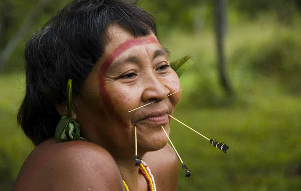 Yanomami woman. The Yanomami territory has allowed uncontacted Indians to survive.