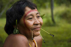 Portrait of a Yanomami woman. The Yanomami paint their faces with the natural black genipapo dye, and decorate themselves with natural fibres.
