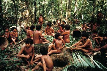 Yanomami, Demini, Brasilien.