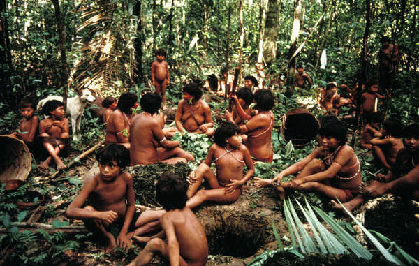 """The Yanomami way of life is threatened by illegal goldmining in the Amazon."""