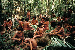 A group of Yanomami people in Demini, Brazil.