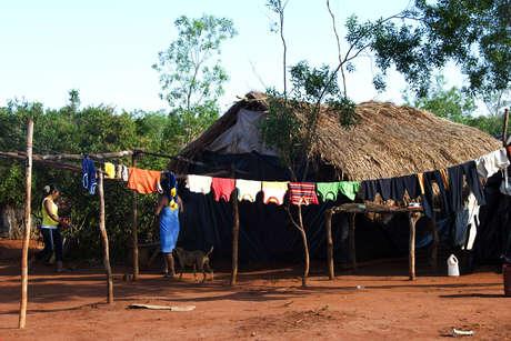 Braz-guar-2010-347_460_landscape
