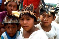 Makuxi children wearing decorative feather headdresses at Uiramutã, Raposa-Serra do Sol, Brazil.