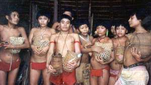 Yanomami-11_300_wide
