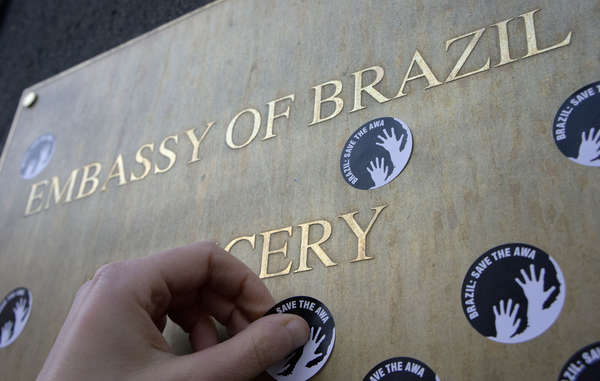 Stickers with the demand 'Brazil: Save the Awá', will be used during Survival's worldwide protest.