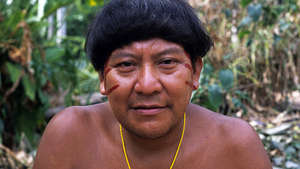 Brazil: Gunmen threaten to assassinate leading Amazon shaman