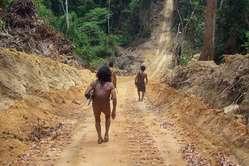 Awá men travel down a road cut by loggers, Brazil.