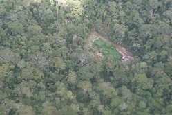 Holzfällercamp im Murunahua Reservat für unkontaktierte Völker im Südosten Perus.