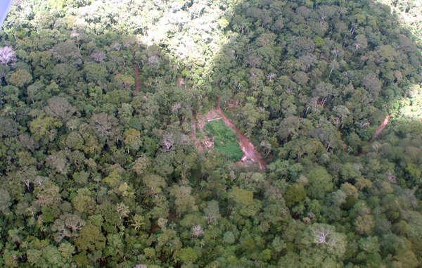 Un campamento de madereros ilegales, visto desde el aire.