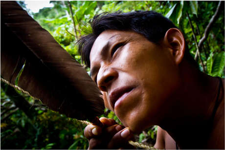 A Matsés man takes aim with his hand made bow and arrow. Many Matsés prefer the silent weapon for hunting as shot guns can scare the game away