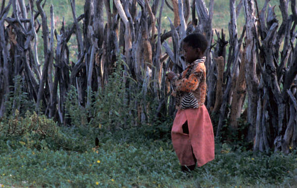 Bushman child, Botswana. Despite the Bushmen's victory in 2006 landmark court case recognising the tribe's right to live and hunt on their ancestral land, the Bushmen continue to face persecution, beatings and torture.