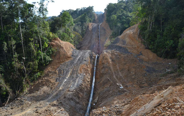 The 500km pipeline, built by the Malaysian national oil company Petronas, is cutting through the Penan's forest, making hunting difficult.