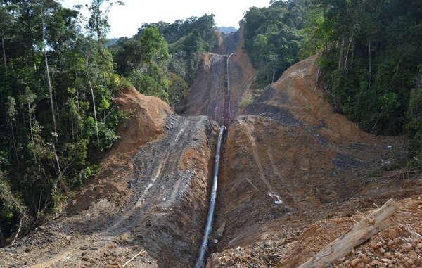Le gazoduc de 500 km de long, construit par la compagnie pétrolière malaisienne Petronas, traverse de part en part la forêt des Penan.