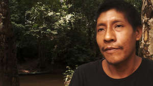 In a rare video appeal, the Awá have called on Brazil's Minister of Justice to act now and protect their land.