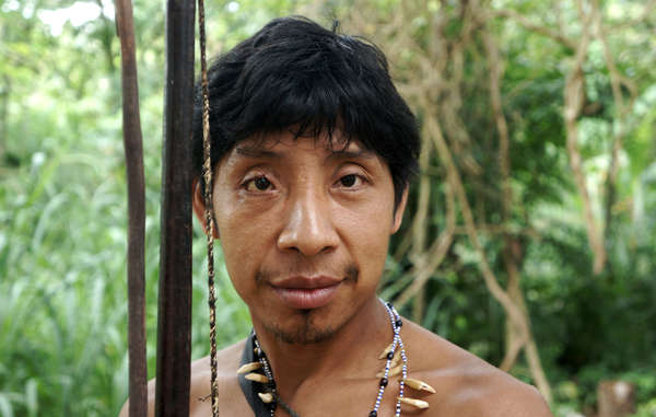 """The Awá are scared to go hunting in the forest because they fear attacks by illegal loggers."""