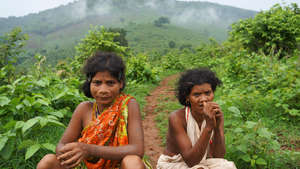 India: Dongria Kondh tribe under threat again