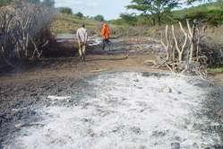 Im Juli 2009 niedergebrannte Maasai Wohnstätte.