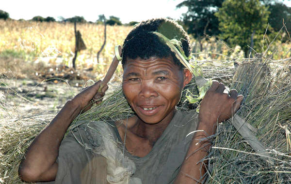 The Bushmen are returning to court again in their struggle to live in peace on their land.