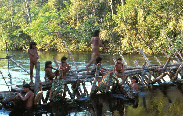 The Enawene Nawe's yakwa ceremony risks being abandoned as fish stocks have fallen drastically.