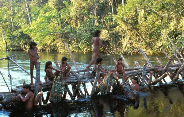 """The Enawene Nawe's yakwa ceremony risks being abandoned as fish stocks have fallen drastically."""
