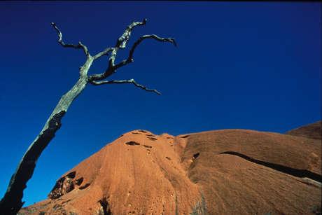 Aus-abor-jmi-02_460_landscape