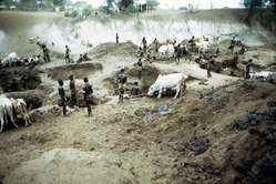 Durante la época sea del año, cuando las aguas descienden, los nyangatom, los mursi y otras tribus de la zona cavan profundos hoyos en los cauces del río para abastecer al ganado y tener agua para beber.