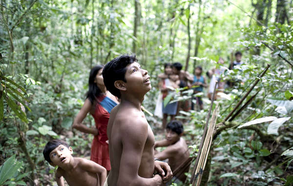 The Awá are one of the last nomadic hunter-gatherer tribes in the Amazon. They depend on the forest for their survival.