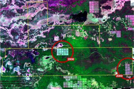 Yaguarete-deforestation-2009-large_460_landscape