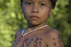 Junge der Yanomami