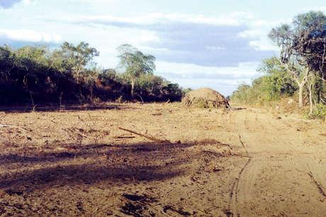 Ayoreo-communal-house_460_landscape