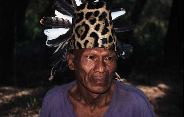 Many Ayoreo were contacted from the 1970s onwards. Since then they have suffered from poverty, disease and the destruction of their land.