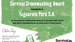 Greenwashing-award-2010-it-1_300_wide