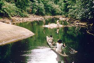 Los akawaios y arekunas pescan en el río Mazaruni y sus afluentes. La presa propuesta inundaría la tierra de estas tribus y destruiría para siempre una zona famosa por su paisaje y su biodiversidad.