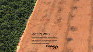 Defying-logic-advert-paraguay-cms_300_wide