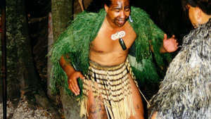 Maori-performer_300_wide