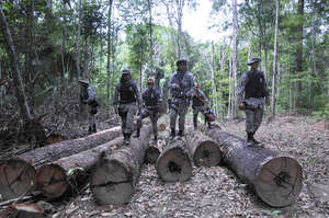 Soldiers at an illegal logging camp on Awá land. The Brazilian government has mounted a huge operation to evict illegal invaders from the Awá's forest.