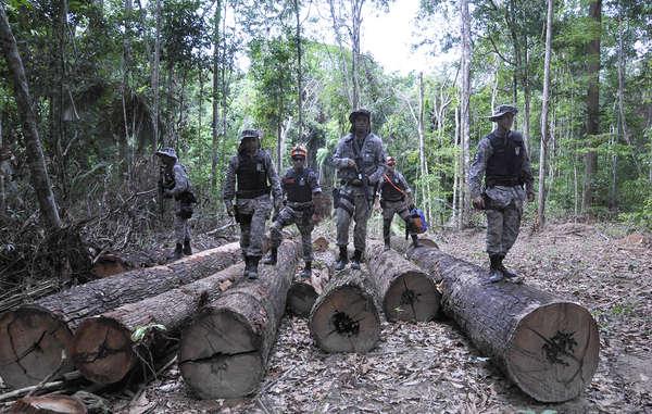 """""""Soldados en un campamento maderero ilegal, en territorio awá. El Gobierno de Brasil ha puesto en marcha un importante dispositivo para expulsar a los invasores ilegales de la selva de los awás. """""""