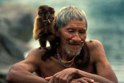 Arara Indian, Pippjt with pet monkey, Brazil.