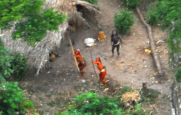 Los indígenas no contactados en la Amazonia brasileña y peruana están amenazados por la tala ilegal.