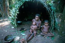 Pygmee gezin