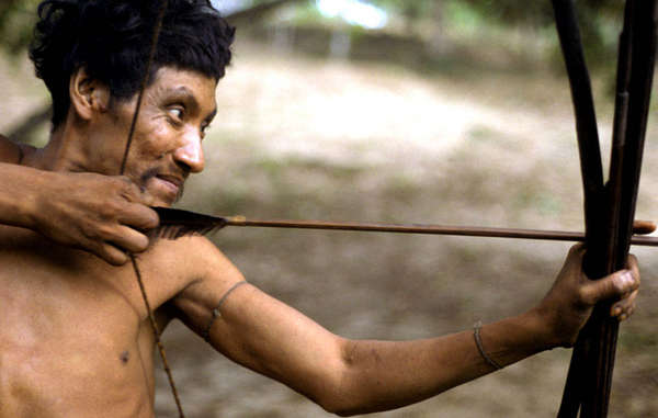The Awá tribe is being driven towards extinction by Brazil's failure to protect its forest.