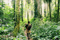 Lush forests are key to the Pygmy sense of identity. Their land informs their culture and provides their livelihood.