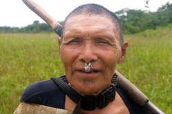 La réserve des Indiens murunahua est occupée par les bûcherons illégaux.